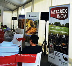 Agroglobal Metarex